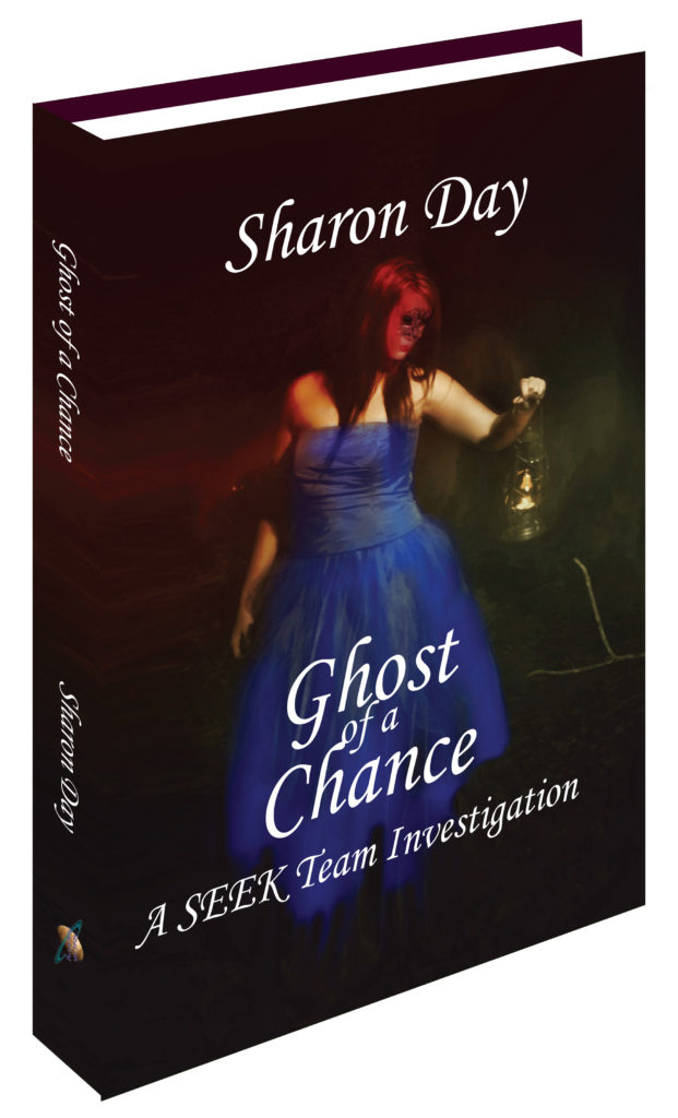 <B>Ghost of a Chance> </B> A SEEK Team Investigation